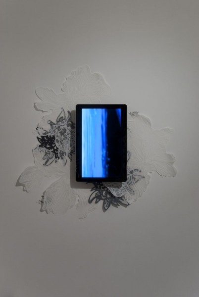 Installation View, Their Wondrous Transformation and Peculiar Nourishment, Silkscreen, ink jet prints, video, 2011