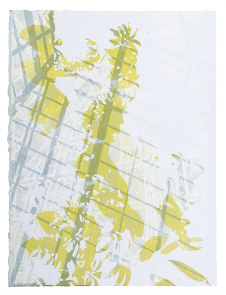 """Closed System 11, 15""""x11"""", lithograph and silkscreen"""