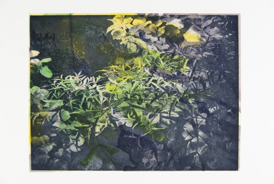 "Seeming Nature I Photogravure, watercolor, handmade paper, chine colle, 12""x16"", 2015"