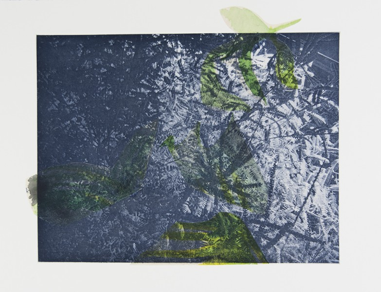 "Seeming Nature VII Photogravure, watercolor, handmade paper, chine colle, 12""x16"", 2015"