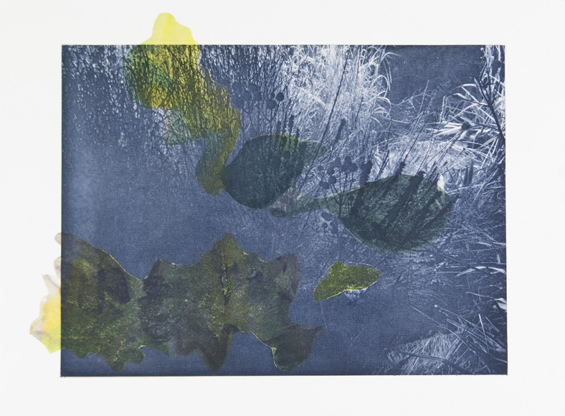 "Seeming Nature IX Photogravure, watercolor, handmade paper, chine colle, 12""x16"", 2015"