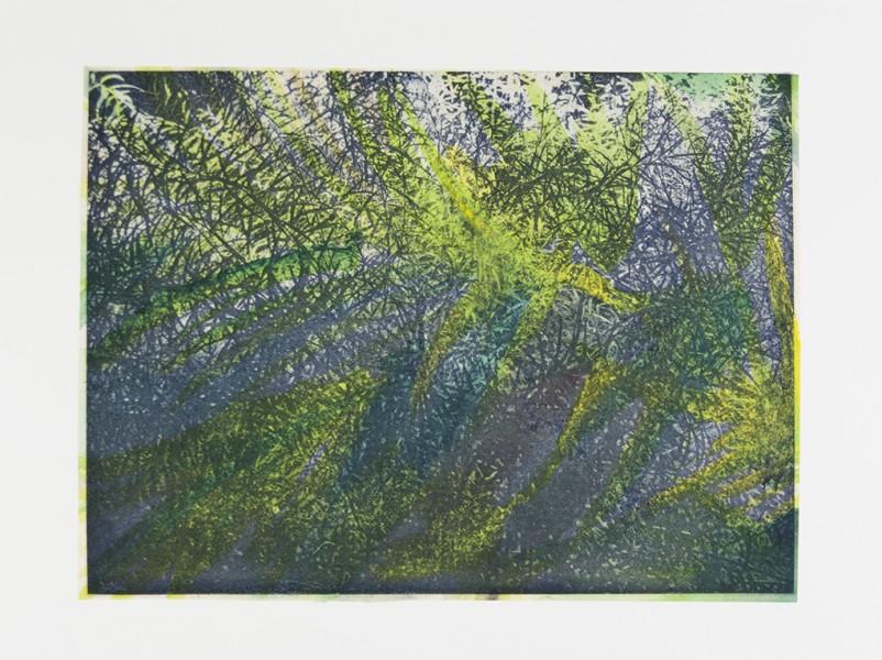 "Seeming Nature VIII Photogravure, watercolor, handmade paper, chine colle, 12""x16"", 2015"
