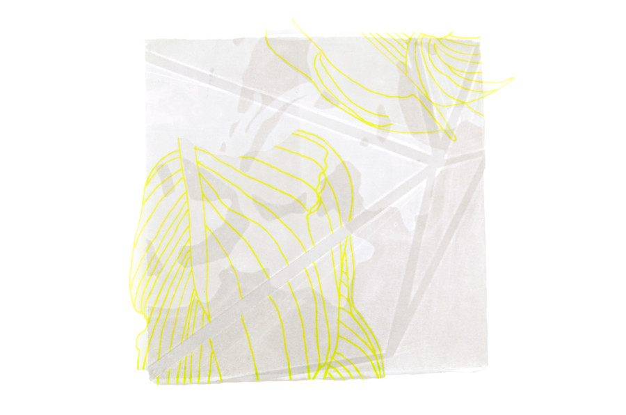 """Scion, Silkscreen and monotype on paper and cut polyester film, approximately 12""""x12"""", 2015"""