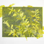 "Turf II (state I), etching, aquatint, monotype, handmade paper, chine colle, 13""x17"""