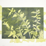 "Turf II (state II), etching, aquatint, monotype, handmade paper, chine colle, 13""x17"""