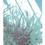 "Third Nature IV, Lithograph, 20""x15"", 2017"