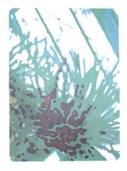 """Third Nature IV,"" Lithograph, 20""x15"", 2017"