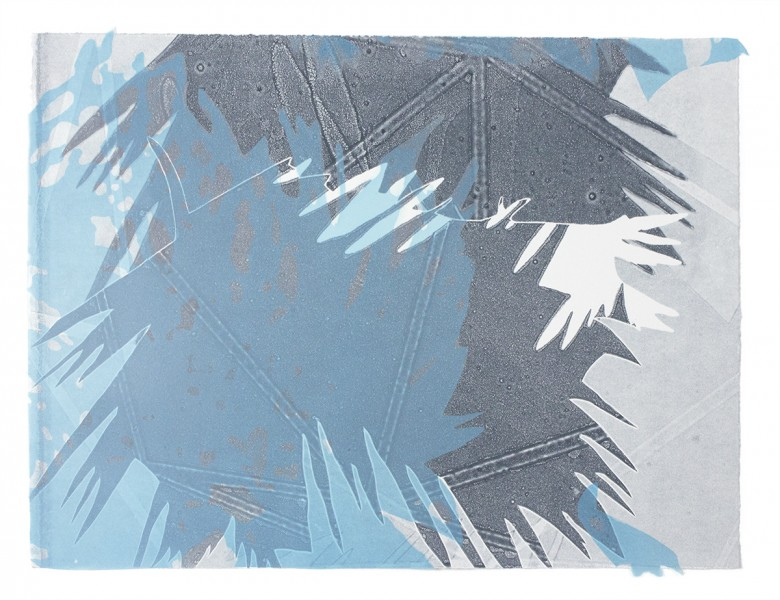 """""""Through A Glass,"""" Lithograph and monotype on paper and cut Mylar, 15""""x20"""", 2017"""